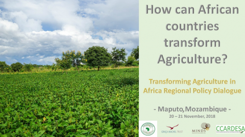 MINDS, Graça Machel Trust, FANRPAN and  CCARDESA partner to host High Level Dialogue on Transforming Agriculture in Africa