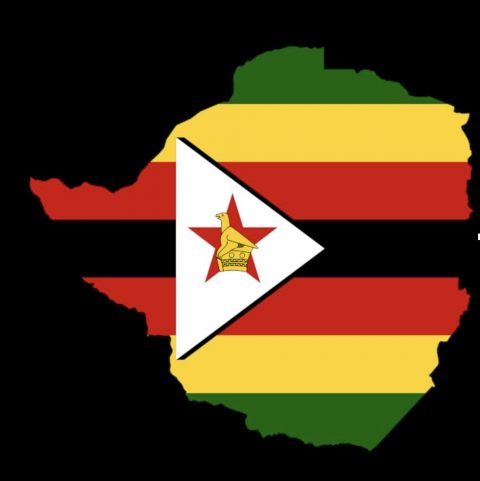 Zimbabwe Dialogue: on an unexpected trajectory?